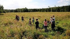 Maaseudun Tulevaisuus – 138 puun kasvatus hyvittää Korkeasaaren yhden vuoden matkat ja eläinkuljetukset