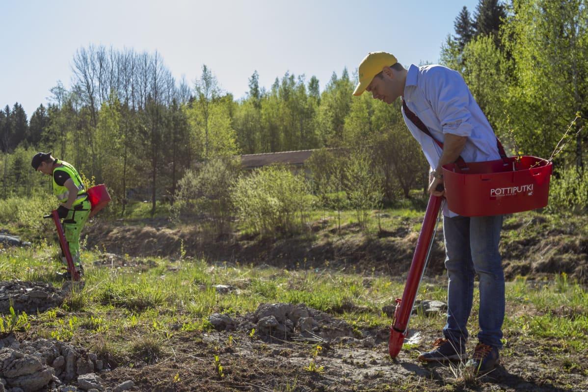 YLE – Puuni ja Tampere-talo istuttavat joutomaalle 3 670 puuntaimea hiilinieluksi