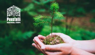 Puustelli – Puustelli kompensoi hiilijalanjälkeään istuttamalla puita